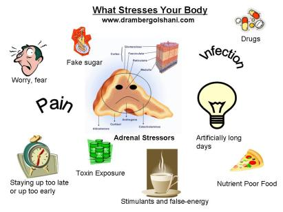 what-stresses-your-body