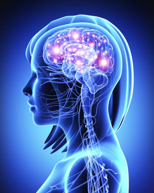 brain-optibac-probiotics